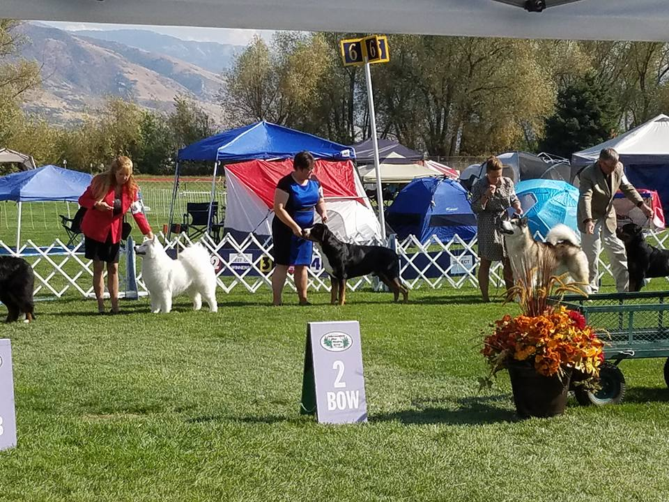 Cruze 2 years, Group 2 in Farmington Utah